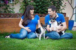 Pregnant lady and man with two dogs